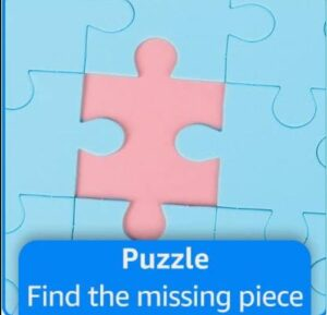 Read more about the article Find the missing piece || Funzone Puzzle